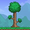 Test iOS (iPhone / iPad) Terraria