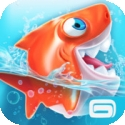 Test iOS (iPhone / iPad) Shark Dash