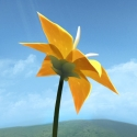 Test iOS (iPhone / iPad) de Flower