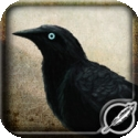 Test iPad de Munin